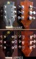 Remplacement mécanique sur guitare Folk