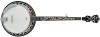 Reparation reglage banjo